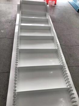 白色PVC輸送帶—佛山開泰工業皮帶廠家