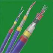 Belden控制电缆图片