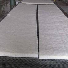 广东高纯硅酸铝针刺毯价格,针刺毯硅酸铝图片