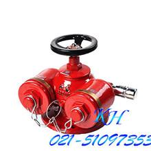 多用式地上式水泵接合器SQD100-1.6图片