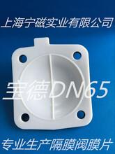 宝德DN65隔膜阀膜片