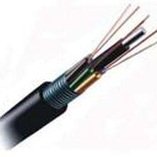西安48芯光缆_48芯铠装光缆图片