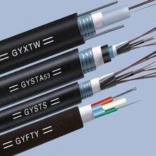 4芯GYFTA-4B1非金属光缆_深圳4芯光缆图片