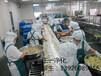 廣州中央廚房工程裝修佛山冷鏈中央廚房裝修施工