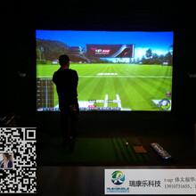 室内高尔夫模拟器模拟高尔夫/高尔夫模拟器/瑞康乐科技