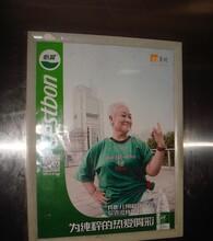 四川成都楼宇电梯平面海报广告宣传服务