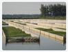 60目防虫网生产厂家现货供应特种水产养殖网箱网片,水蛭养殖网箱,水产养殖网
