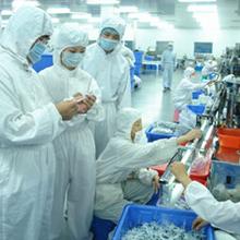 固体制剂车间GMP设计有何要求