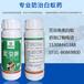 灭白蚁药,白蚁药剂吡虫啉35%,长沙白蚁防治药