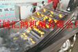 芒果清洗风干流水线自动化的果蔬清洗加工设备自动洗果机价格