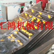 芒果清洗机大型气泡清洗设备批发连续洗果机价格果蔬加工设备