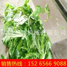 蔬菜清洗预煮机厂家自动化的果蔬加工设备价格农产品机械化生产线