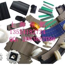 枣庄塑料链板厂家帛朗品牌供