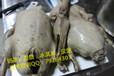 鸭头鸭脖鸭爪鸭胗鸭腿酱牛肉盐水鸭椒麻鸡等等技术培训