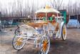 皇家馬車歐式馬車馬車圖片山西太原馬車