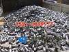 炉料纯铁价格,炉料纯铁钢坯YT01