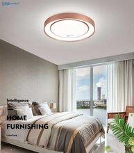 驰雄厂家国豪品牌500mm吸顶灯三色变光卧室客厅灯团团圆圆图片