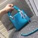 Dior戴妃蜥蜴纹手提包价格,Dior戴妃蜥蜴纹手提包介绍