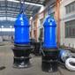 1000QHB潜水轴流泵8000方流量轴流泵立式安装潜水轴流泵