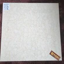 紫爱家园抛光砖800800九龙壁(金碧辉煌)加厚工程砖客厅酒店地砖图片