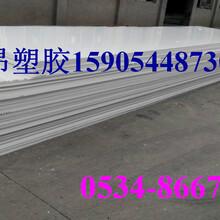 供应高密度白色HDPE板材,常德市进口原料HDPE板厂家