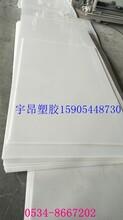 专业生产聚丙烯板PP板白色PP板焊接水箱板白色塑料板