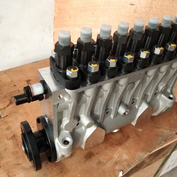 淄柴Z8170发电柴油机电调喷油泵总成ACE275H-24配BP6822喷油泵