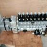 电调喷油泵总成