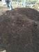 农业肥料,发酵营养土,育苗基质