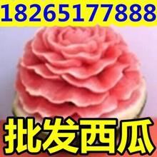 辽宁京欣西瓜今年市场价格图片