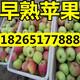 QQ图片20160614083502
