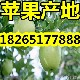 QQ图片20160614083515