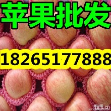 山东苹果产地山东苹果价格山东苹果批发图片