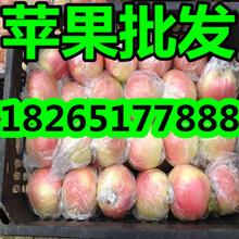 苹果热季促销图片