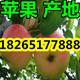 QQ图片20160614083524