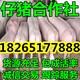 QQ图片20160327151026