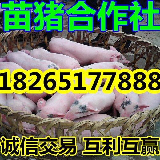 QQ图片20160327151151