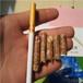 锯末颗粒多少钱一吨许昌长葛和煤相比怎么样?