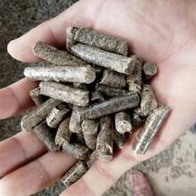 西平县木屑生物质颗粒燃料-来图定制图片