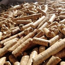 陕县木屑生物质颗粒燃料-龙8国际娱乐官方网站信息图片