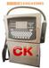 松原喷码机厂家直销,A200小字符喷码机,创凯喷码机性价比最佳,优质喷码机耗材直供