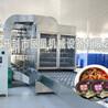 酸辣粉生产线专利技术工艺精良