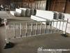 铁艺护栏青岛供应道路护栏批发市政公路护栏铁艺隔离护栏厂家直销