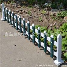 青岛供应PVC园艺护栏厂家直销草坪护栏篱笆栅栏绿化塑钢护栏支持定做图片