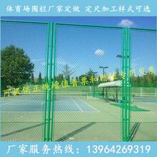 供应浸塑防护网菱形勾花网体育场护栏网操场围栏网图片