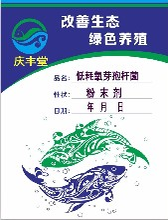 山西慶豐堂低耗氧芽孢桿菌適用于水產養殖不同季節不同水體對芽孢桿菌的需求調水凈水改底三合一圖片