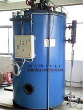 佛山禅城富力牌500KG燃油锅炉燃油蒸汽发生器