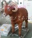 大角羊模型博物馆仿真动物大型动物机械动物模型
