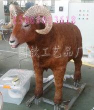 大角羊模型博物馆仿真动物大型动物机械动物模型图片