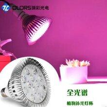 led补光灯是什么意思多肉植物灯LED射灯植物灯LED植物灯生长灯图片